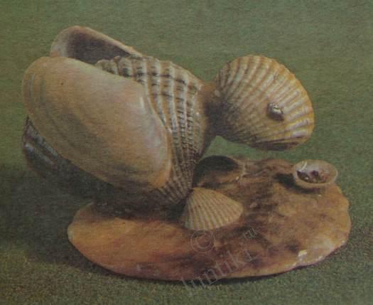 Поделки из черноморских ракушек 85